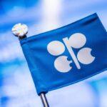 Agenda do Dia: reunião da Opep, resultado do setor público e Petrobras Day