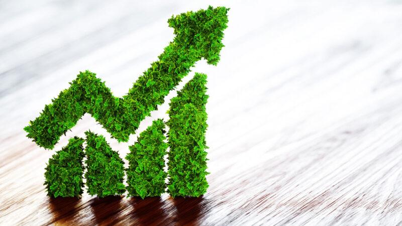 B3 e S&P lançam índice ESG para empresas brasileiras