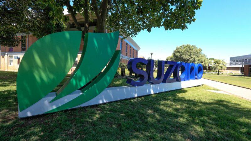 Suzano (SUZB3): Prejuízo recua 79,5% no 1T21