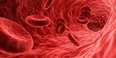 SulAmérica (SULA11) lança fundo temático de saúde e biotecnologia para superar Ibovespa