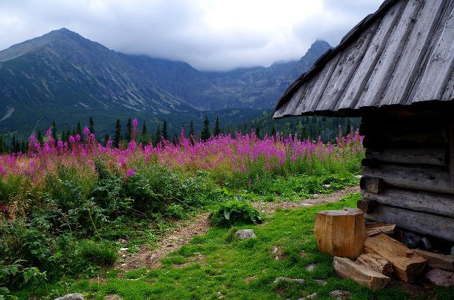 Tatry - příroda, kterou jinde ve světě nenajdete
