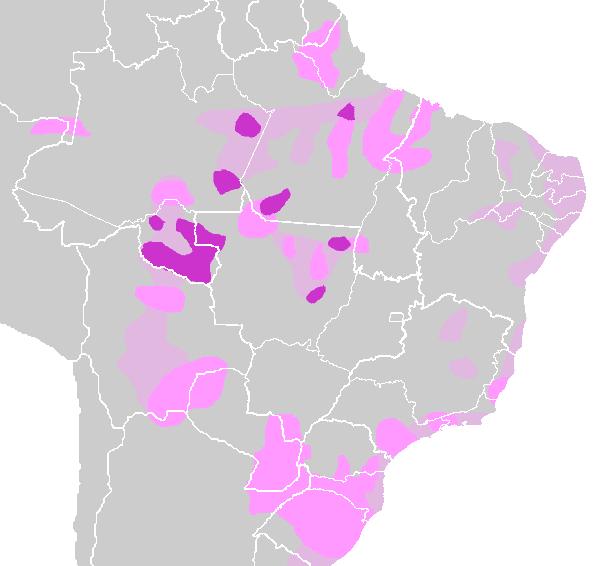 Tupi-guarani