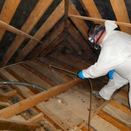 Woodworm Wooden Timber Treatment