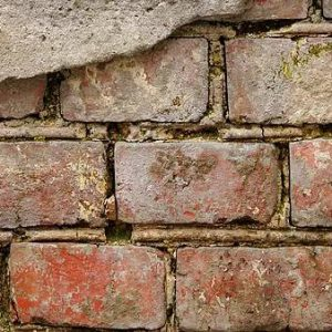 Rising Damp in Wall