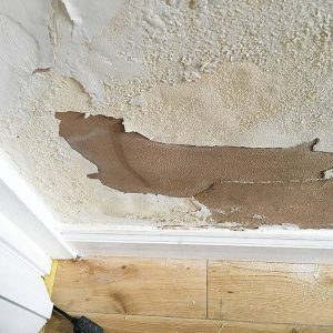 Signs of Dampness