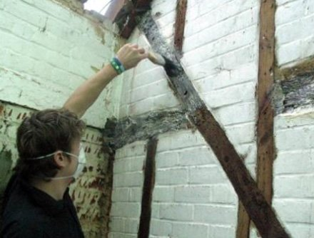 Barn Woodworm Treatment