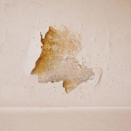 damp-wall