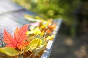 autumn-leaves-guttering-house