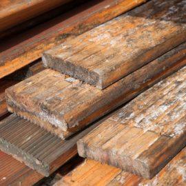Damp Timber