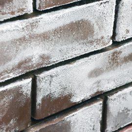 Efflorescence - powdery-white salt deposits on the wall