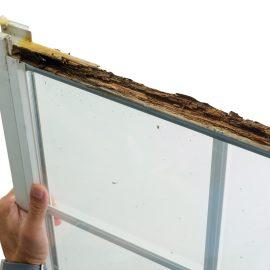 Damp Rotten Window Frame