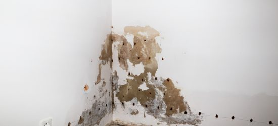Damp Wall Treatment - Damp Proof Injection Cream
