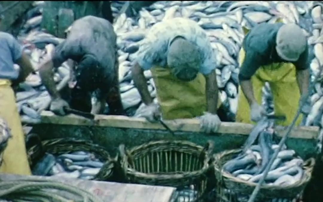 CFP L'Atalante: El archivo migrante: estudios sobre migración a través de los archivos cinematográficos