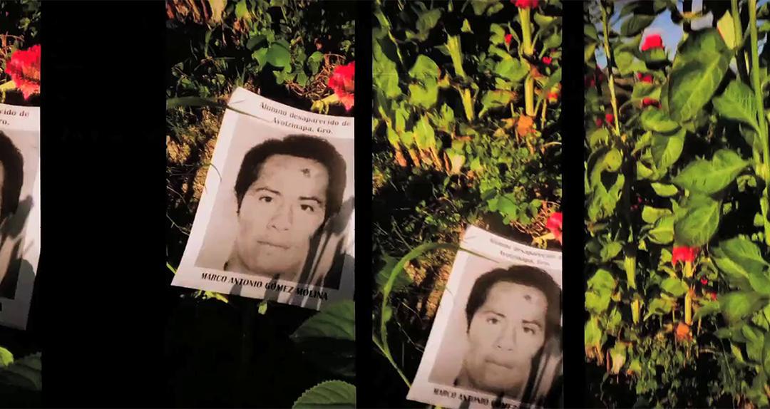 Webinar: Imágenes errantes en el cine experimental mexicano contemporáneo