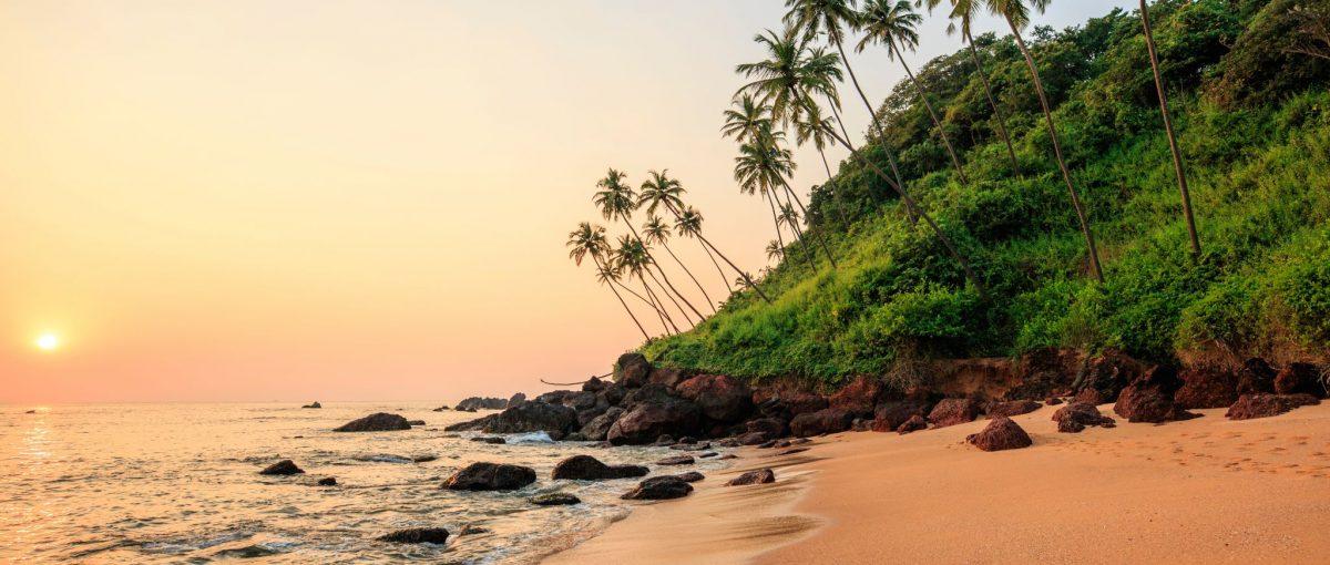 Goa Travel Escort