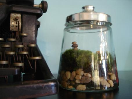 jar-terrarium
