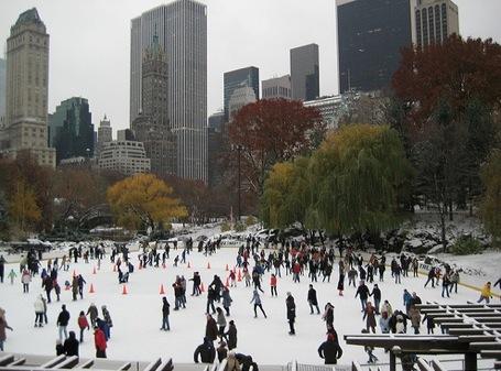 trump ice skating rink