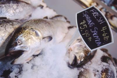 salmon on display at seafood shop