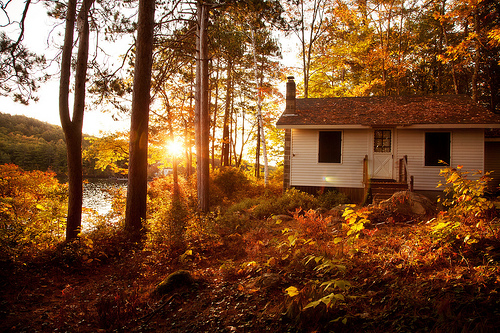 Home Decorating Tips to Make Your Home Feel Like a Cabin