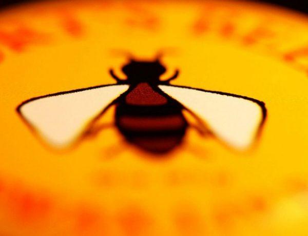 Burt's Bees Namesake, Burt Shavitz, Has Died at 80