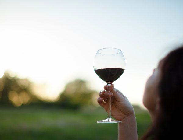 Here's Why You Need to Go Biodynamic Wine Tasting in Europe