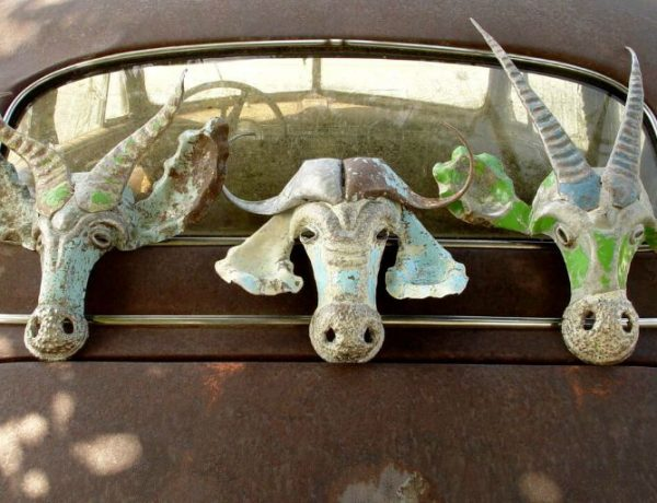 Faux Taxidermy is a Thing. Would You Hang This On Your Wall?