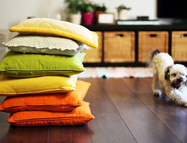 Fab floor pillows you can bu or diy.