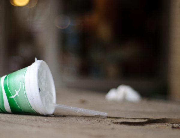 New York City's Styrofoam Ban Dies (Unlike Actual Styrofoam)