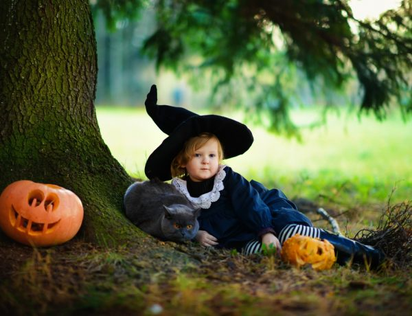 Create these fun Halloween Ideas for cat lovers.