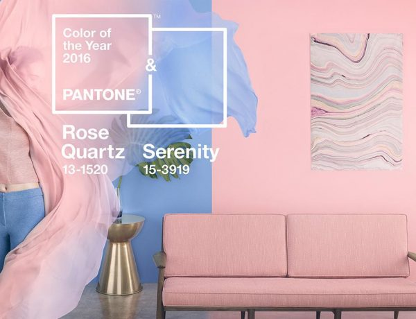 Pantone's Color of the Year fro 2016 is not one, but two colors.