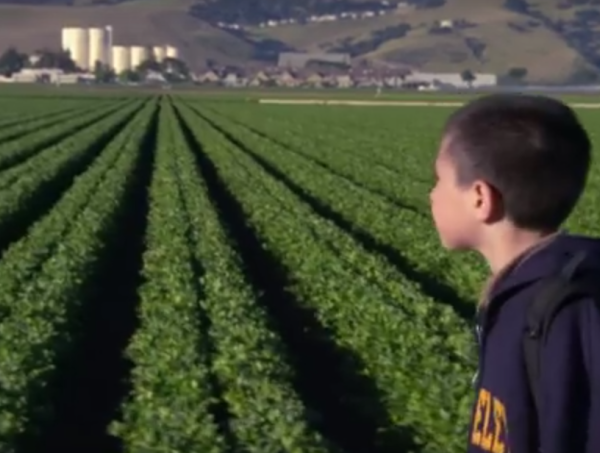 """East of Salinas"" shows what it takes to harvest lettuce."