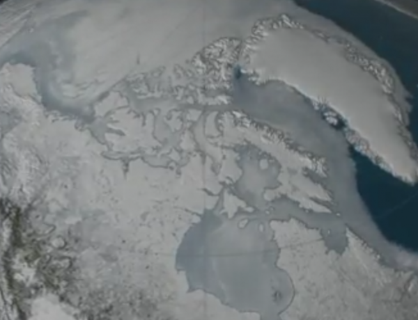 Sea ice is getting really low.