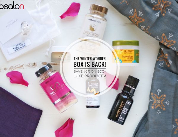 EcoSalon Winter Wonder Box 2016