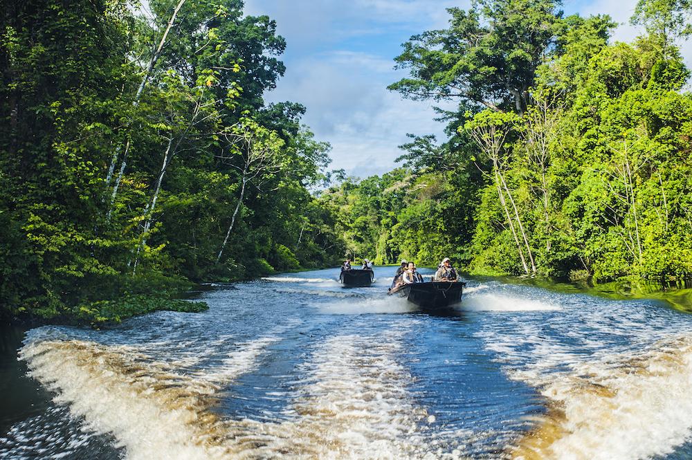 Eco river cruises