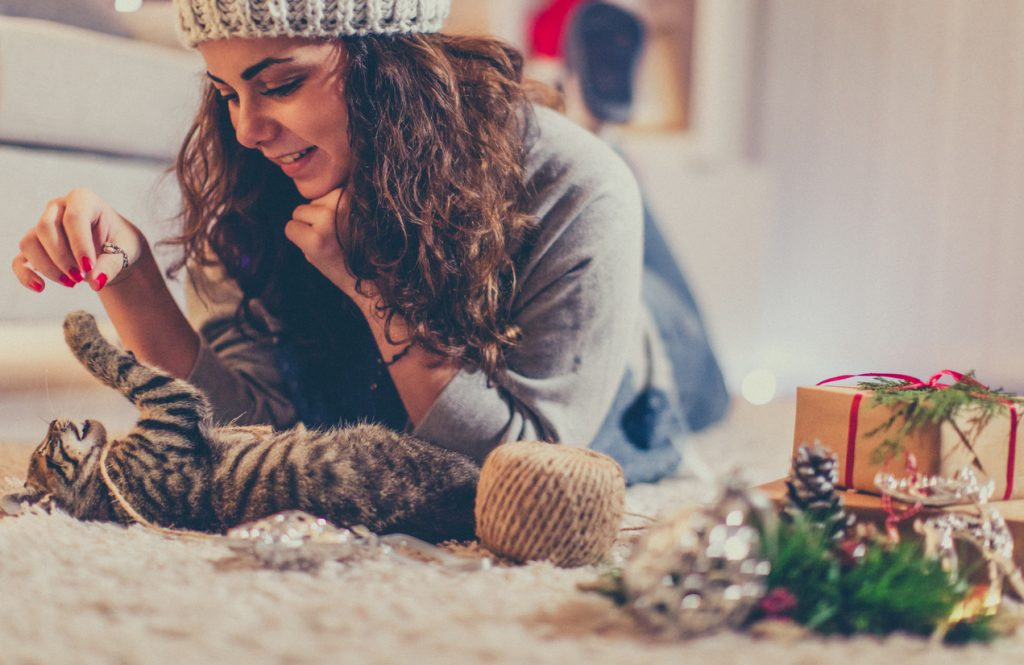 Purr-fectly Wonderful Holiday Gifts for Cat Lovers