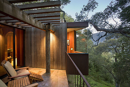 Treehouse hotels for tree huggers.