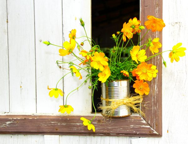7 Super Clever Repurposed Flower Vases for Summer Blooms