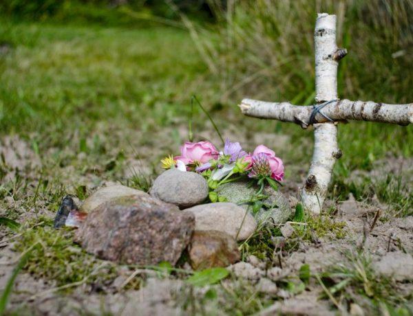 A pet deserves a green burial, too.