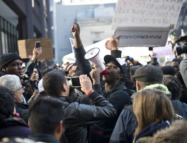 4 Lessons from an Accidental Activist