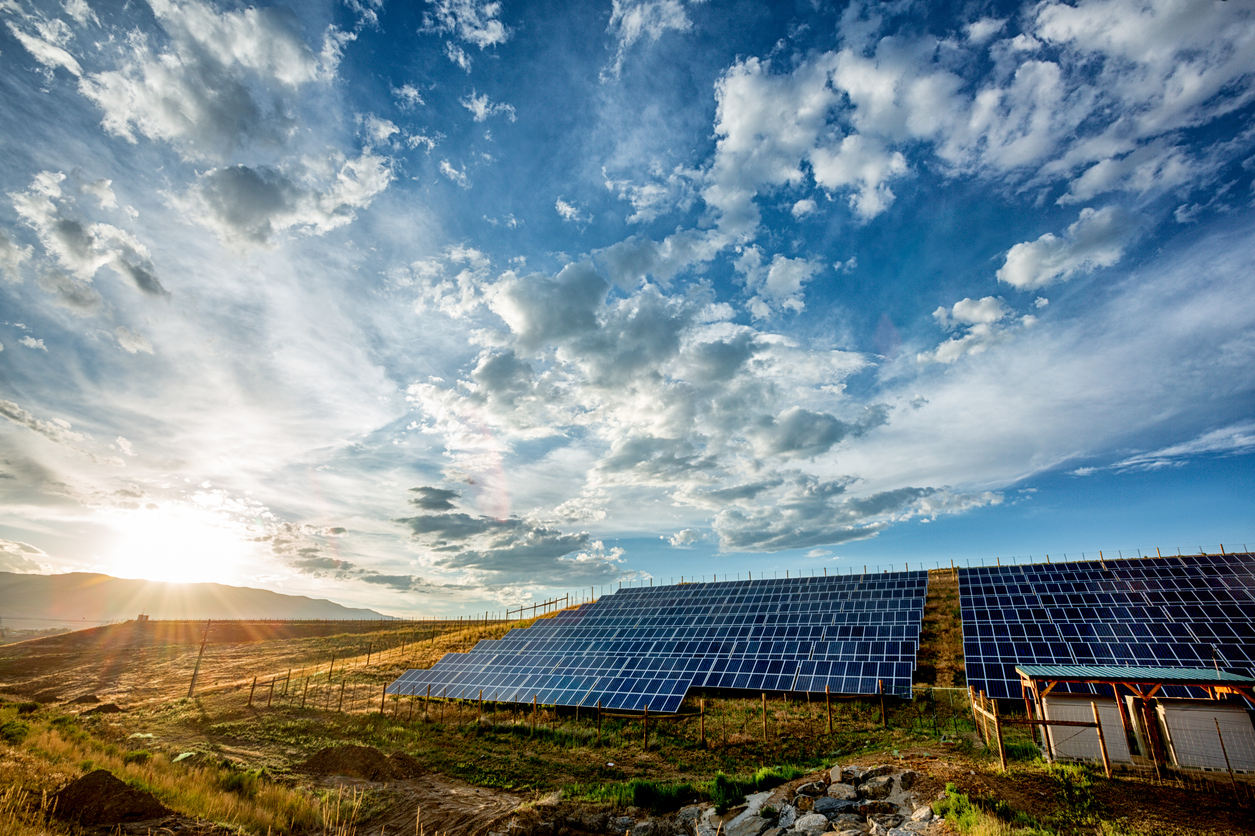 How Organic Valley is Growing the U.S. Market for Renewable Energy