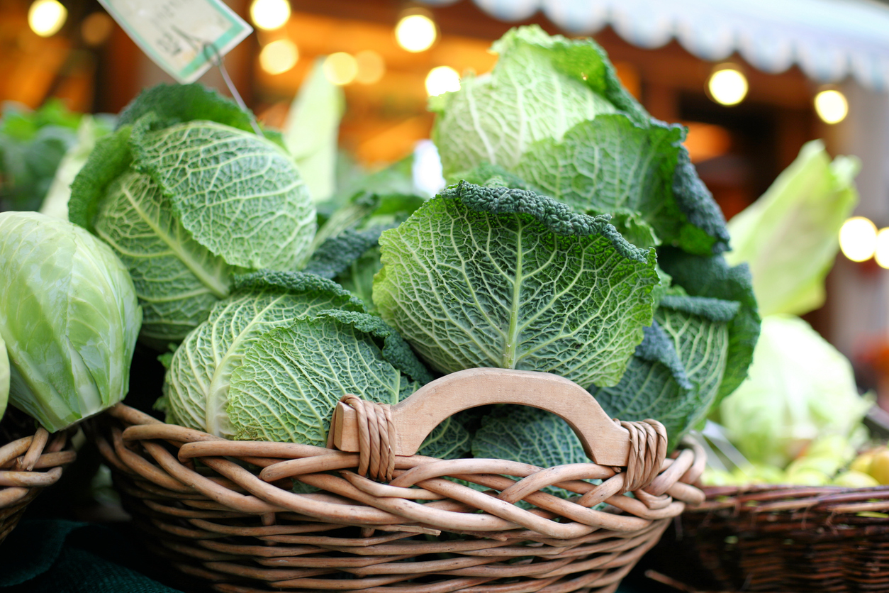 5 Yummy Cabbage Recipes to Use Up All of That Winter CSA Produce