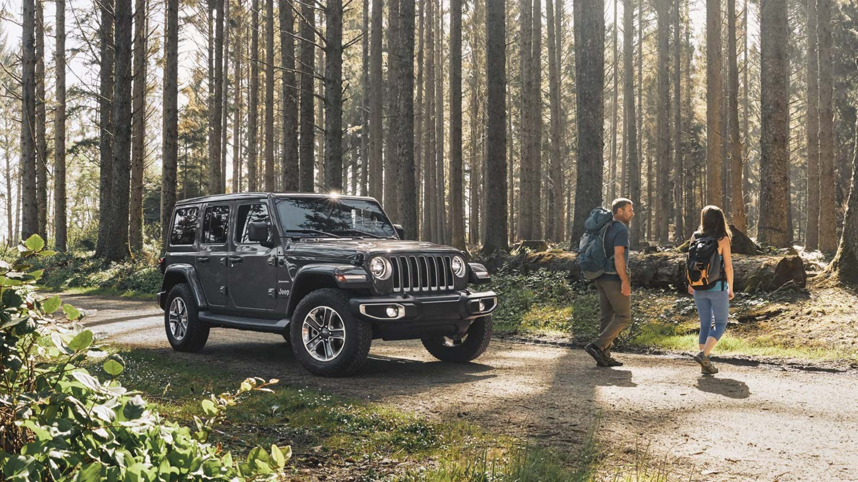 couple drove their black 2020 jeep wrangler to the woods to hike