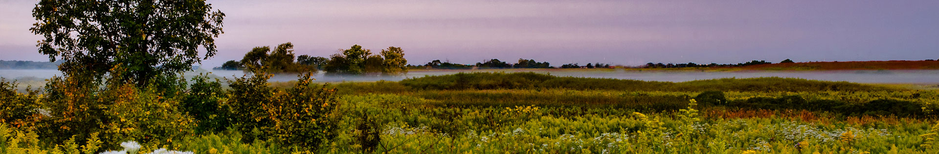 Rolling mists over a wild prairie