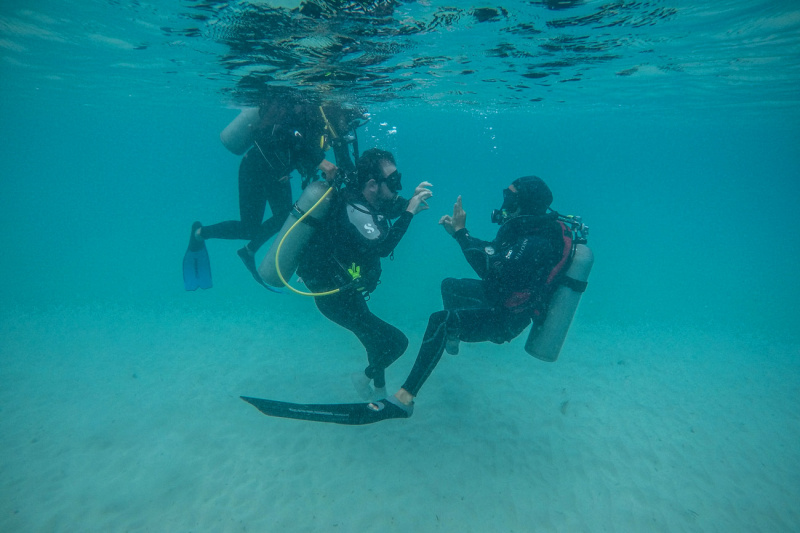 Day 1. Diving in Anakena
