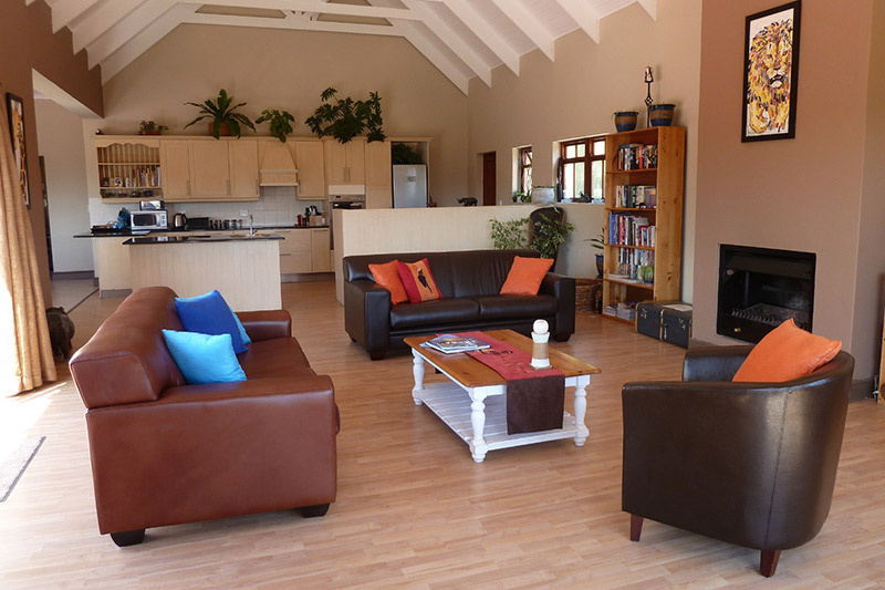 The cozy communal living room includes comfortable sofas, a bookshelf, plants, and a full kitchen
