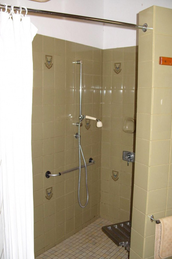 Roll-in shower and shower seat