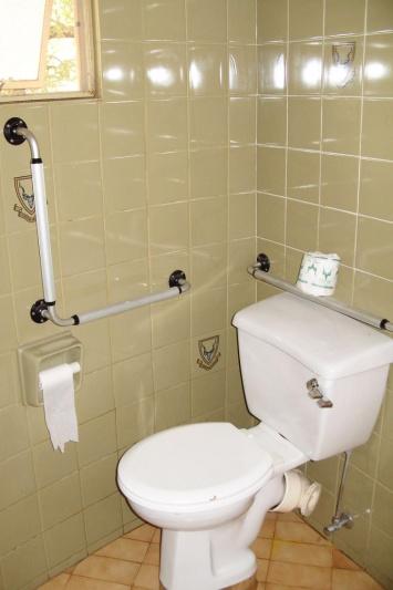 Toilet and grab bars