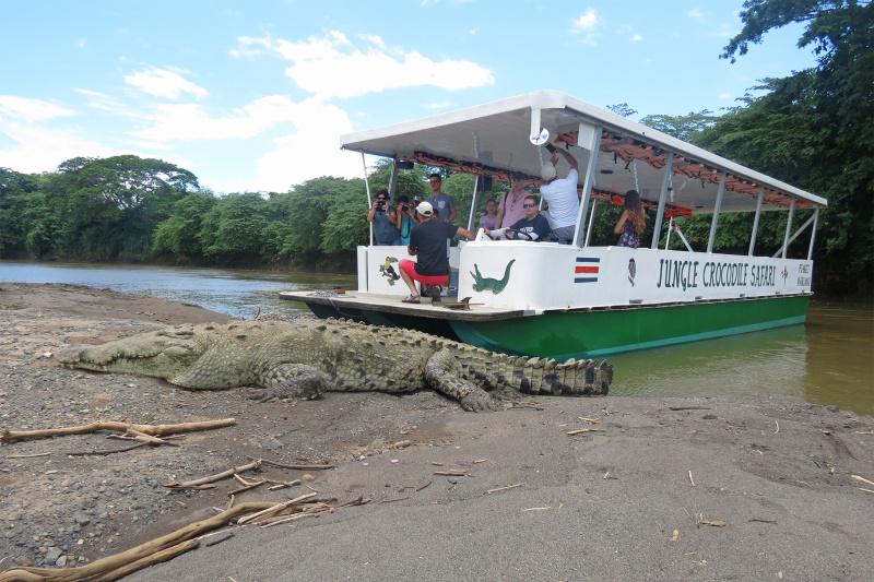 Tarcoles River Boat Tour