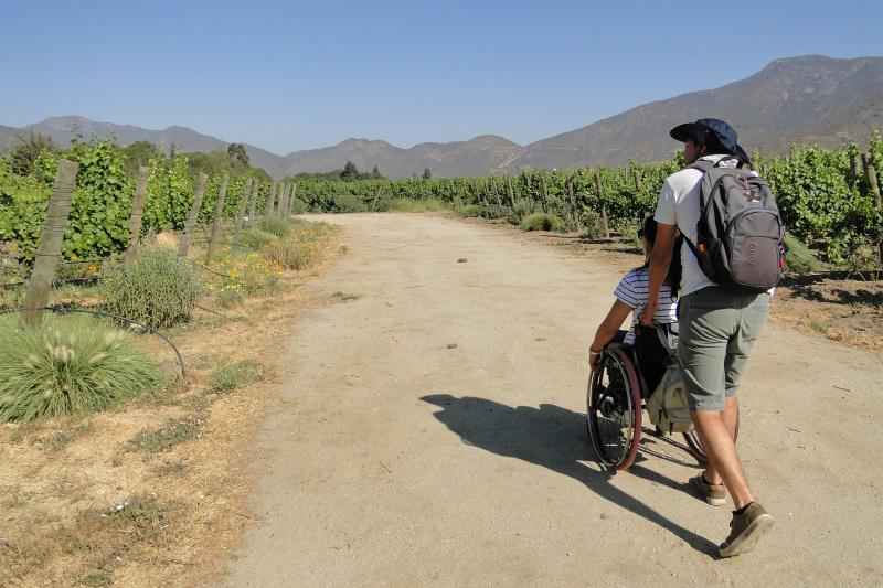 Exploring the vineyard.