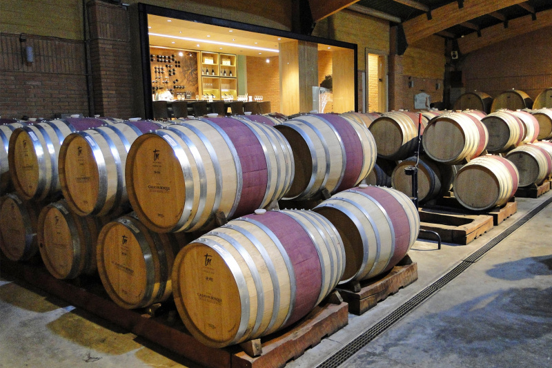 Cellar and barrel room with wooden wine casks.